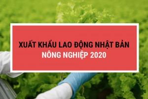 Xuất khẩu lao động Nhật Bản đơn hàng nông nghiệp 2020